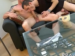 Taming a sexually excited homo pecker